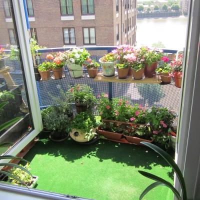 balconygarden